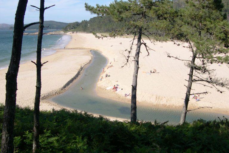 playa-nemina-768x514